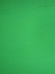 Baumwoll Jersey grasgrün